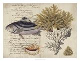 Sealife Journal III