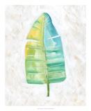 Ocean Side Palms V
