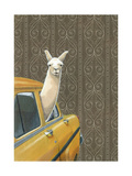 Taxi Llama Reproduction d'art par Jason Ratliff