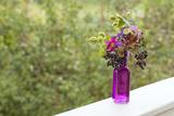 Vase  Bunch  Berries  Hop Blossoms  Flowers  Autumn