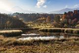 Autumn at Aichwaldsee