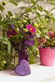 Vase  Bunch  Berries  Hop Blossoms  Flowers  Heart