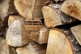 Metal Heart  Wood Pile
