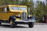 USA  Yellowstone National Park  Park Vehicle