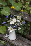 Bouquet  Summer Flowers  Bank