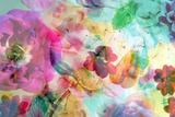 Abstract Dreamy Multicolor Blossoms in Water
