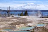 USA  Yellowstone National Park  West Thumb Geyser Basin