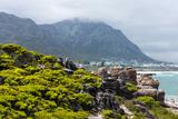 South Africa  Garden Route  Hermanus