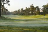 View on a Golf Course with Ground Fog  Praia D'El Rey  Atlantic Coast