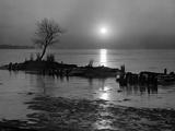 The Marsh - Late Evening Scene
