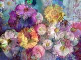 Translucent Multicolor Blossoms