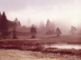 Scenery  Lake  Morning Fog