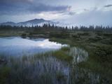 Sunrise in the Nature Reserve Siebenmšser  KitzbŸhel Alps  Moor  Hochkrimml  Gerlosplatte
