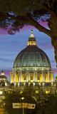 St Peter's Basilica  Rome  Lazio  Italy