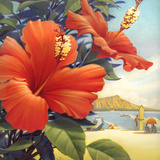 Hibiscus Beach Day Reproduction d'art par Kerne Erickson