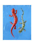 Red and Green Salamanders on Blue Background