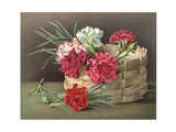 Painterly Carnations and Stems with Woven Basket