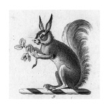 Stylized Squirrel Holding Leaves