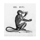 Stylized Monkey Drinking from Chalice Illustration