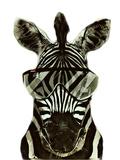 Hipster Zebra Africa