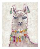 Festival Llama II