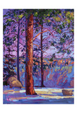 The North Rim I Reproduction d'art par Erin Hanson