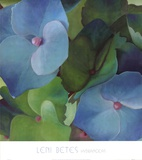 Hortensias Reproduction d'art par Leni Betes