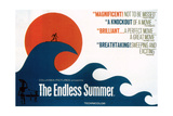 The Endless Summer  1966