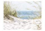 Coastal Photograpy Textured Reproduction d'art par Melody Hogan