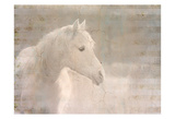 White Knight Serenity