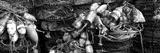 Close-Up of Crab Pots  Humboldt County  California  USA