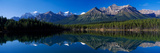 Reflection of Mountains in Herbert Lake  Banff National Park  Alberta  Canada