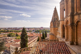 The Cathedral in Salamanca  UNESCO World Heritage Site  Castile and Leon  Spain  Europe