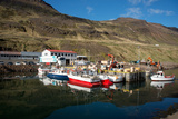 The Fishing Port of Nordurfjordur  Arneshreppur  West Fjords  Iceland  Polar Regions