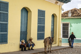 Elderly Men Sitting with Donkey at the Street  Trinidad  Sancti Spiritus Province