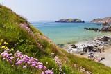 Marloes Sands  Pembrokeshire  Wales  United Kingdom  Europe