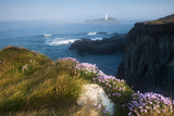 Coastal Cliffs  Godrevy Point  Nr St Ives  Cornwall  England