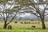 Kenya  Meru County