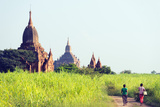 South East Asia  Myanmar  Bagan  Temples on Bagan Plain