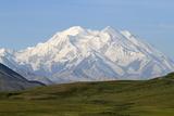 Alaska  Usa  Denali National Park the 6