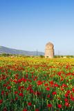 Turkey  Eastern Anatolia  Hasankeyf