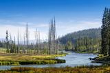 Yellowstone River  Yellowstone National Park  Wyoming  Usa