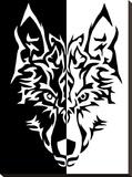 Black White Wolf Animal Wolves