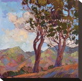 Catalina Hills