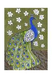 Penelope B Peacock