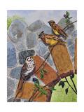 Song Sparrow and Cedar Waxwings