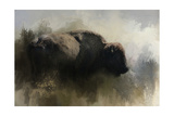 Abstract American Bison