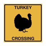 Turkey Crossing