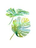 Watercolor Tropical 1