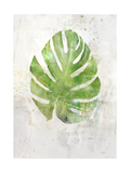 Textured Split Leaf Palm